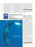 REZENSIONEN - Wissenschaft Online - Seite 7