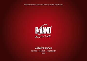 ACOUSTIC GUITAR - B-Band