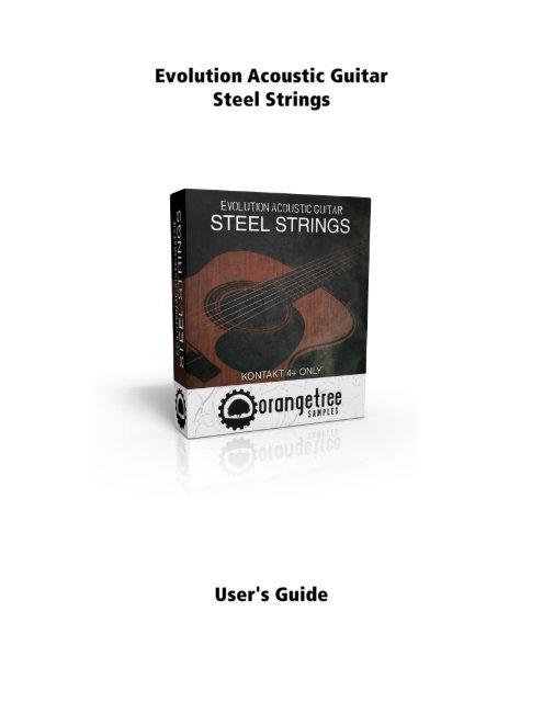evolution acoustic guitar steel strings