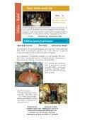 October–December 2009 - Ucheldre Centre - Page 6