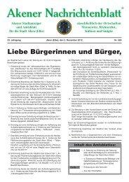 Ausgabe 564 vom 02.11.2012 - Stadt Aken (Elbe)