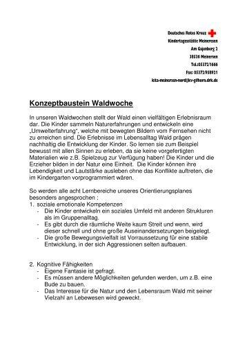 Konzeptbaustein Waldwoche - DRK Gifhorn
