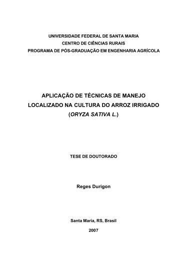Aplicação de técnicas de manejo localizado na cultura - UFSM