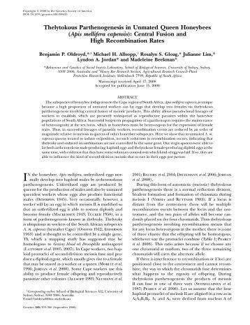 Thelytokous Parthenogenesis in Unmated Queen ... - Genetics