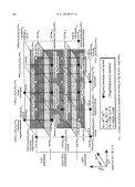 Nomenclature of Amphiboles - Mineralogical Society - Page 4