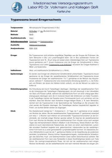 Trypanosoma brucei-Erregernachweis - Labor Prof. Seelig