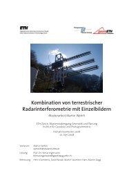 Bericht - IGP - ETH Zürich