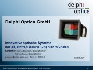 Delphi Optics GmbH - Private Equity Forum