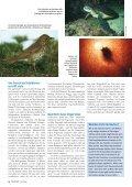 06-14 Lichtverschmutzung - Natürlich - Seite 5