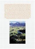 Sanierung der Hohenfreyberg - Dr. Joachim Zeune - Page 3