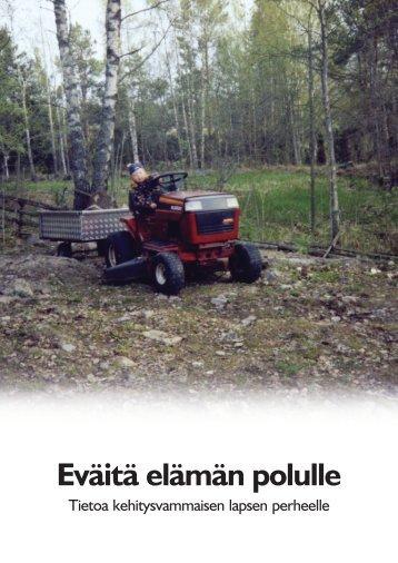 Eväitä elämän polulle - Rauman kaupunki