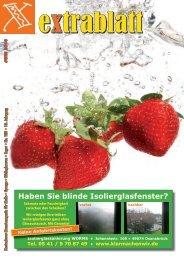 Ausgabe Juni 2010 - Extrablatt