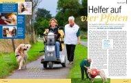 Feria (3) - Therapiehunde Deutschland