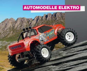 13 Elektro RC Cars - Modellsport Schweighofer