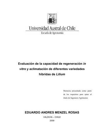 Evaluación de la capacidad de regeneración in vitro y aclimatación ...