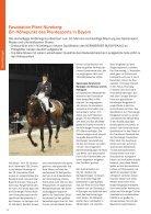 pferde pferde - Seite 6