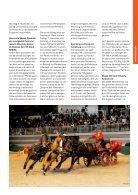 pferde pferde - Seite 7