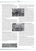 HEV-Information Nr. 116 - Hauseigentümerverbandes Biel - Seite 6