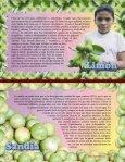 Son aquellos productos que el individuo come para - ADDAC - Page 7