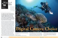 Lawson Wood - Digital Camera Choice :: X-Ray Magazine :: Issue ...