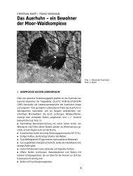 Das Auerhuhn – ein Bewohner der Moor-Waldkomplexe - KBNL