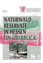 WALD IN HESSEN HESSISCHES MINISTERIUM FÜR ...