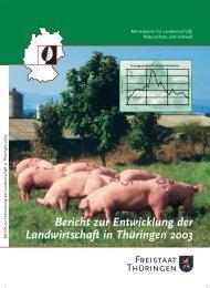 Bericht zur Entwicklung der Landwirtschaft in Thüringen 2003 - TLL