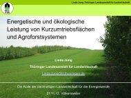 Folie 1 - Bioenergie