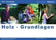 HOLZ - BUDERUS - ZTS GmbH