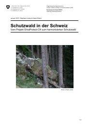 Schutzwald in der Schweiz - Vom Projekt SilvaProtect ... - admin.ch