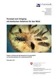 Konzept zum Umgang mit biotischen Gefahren für den Wald - BAFU