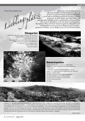 Ausgabe 153 - Aug 2010 (pdf, 4,5 MB - Bürgerverein Oberwiehre ... - Page 4