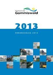VORANSCHLAG 2013 - Gemeinde Gommiswald