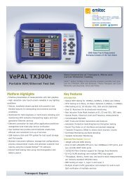 VePAL TX300e - emitec-industrial.ch