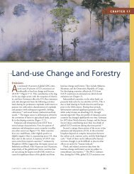 Land-use Change and Forestry - World Resources Institute