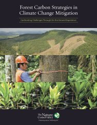 Forest Carbon Strategies in Climate Change Mitigation: Confronting