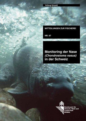 Monitoring der Nase in der Schweiz - BAFU