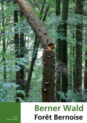 Download - Berner Waldbesitzer