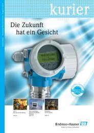 Endress+Hauser InDesign CS2 Template