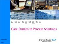 Case Studies in Process Solutions - Endress + Hauser