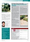 Die Kosten von Außenanlagen - BSB e.V. Berater - Seite 2