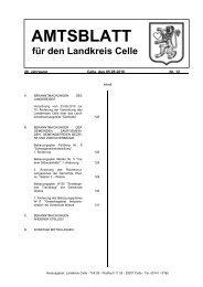Amtsblatt 12-2010 - Landkreis Celle