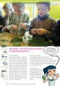 Kräuter, Pillen und Tinkturen - AESKULAS STREIFZUG ... - tjfbg - Seite 6