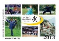 hier - Wushu Akademie Schweiz