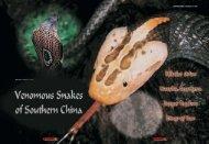 Venomous Snakes of Southern China - Reptilia