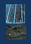 MTA-Genel-Mudurlugu-Karapinar-Komur-Rezervi-Raporu-2012 - Page 6