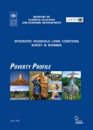 integrated household living conditions survey in myanmar - UNDP ...