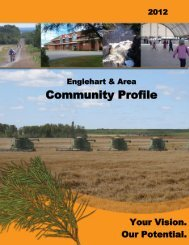 Englehart and Area Community Profile - The Corporation of the ...