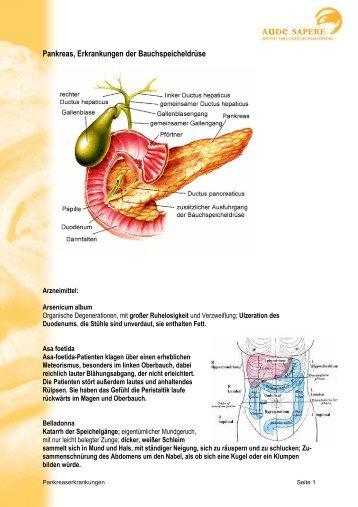 Pankreas, Erkrankungen der Bauchspeicheldrüse