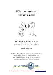 EKG-Auswertung bei Hund und Katze - Fachbereich ...